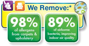 healthy carpet cleaning and upholstery cleaning